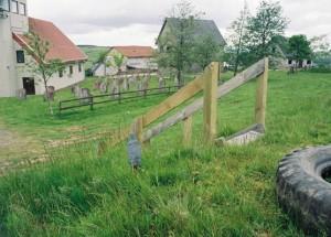 Graveyard-Epynt49